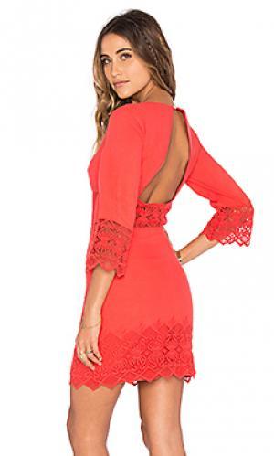 Платье с вырезами tulum Nightcap. Цвет: оранжевый