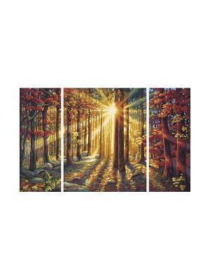 Триптих Осенний лес, 50х80 см, 1/6 Schipper. Цвет: коричневый