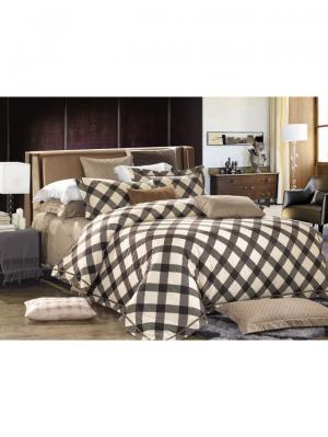 Комплект постельного белья ROMEO AND JULIET. Цвет: серо-коричневый, темно-коричневый, бежевый
