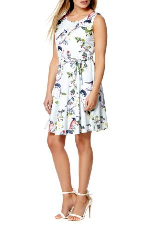 Dress Iska. Цвет: multicolor