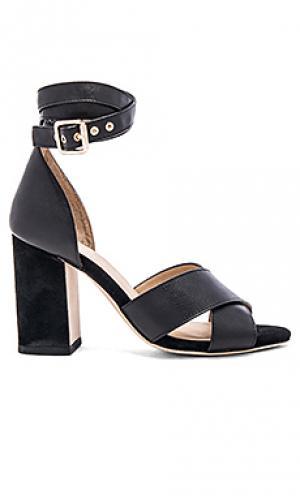 Туфли на каблуке lily RAYE. Цвет: черный
