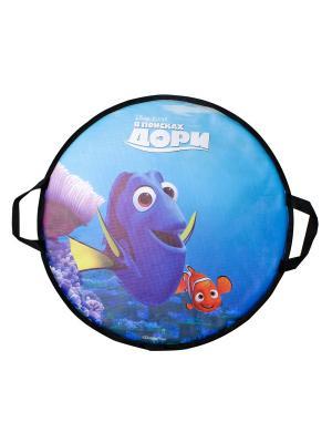 Ледянка Disney В поисках Дори, 52 см, круглая 1Toy. Цвет: синий, зеленый