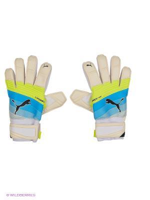 Перчатки вратарские evoPOWER Grip 2.3 RC PUMA. Цвет: белый