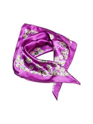 Платок Kameo-bis. Цвет: фиолетовый, белый, зеленый