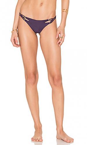 Низ бикини molokini Acacia Swimwear. Цвет: фиолетовый