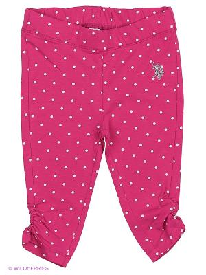 Брюки U.S. Polo Assn.. Цвет: розовый