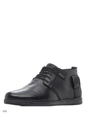 Ботинки MILLIONER. Цвет: черный