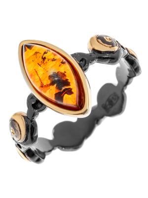 Кольцо Балтийское золото. Цвет: черный,коричневый,серебристый,оранжевый,золотистый,желтый