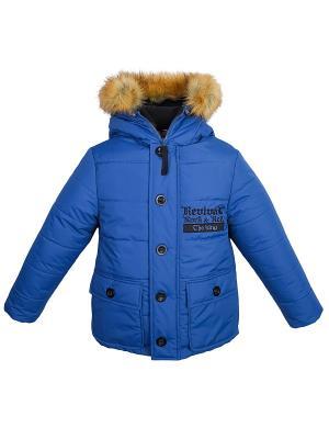Куртка Bell bimbo. Цвет: синий