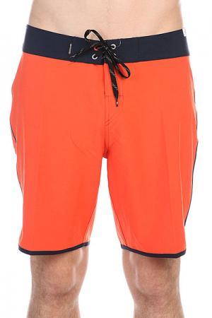 Шорты пляжные  Everydayscallop Mandarin Red Quiksilver. Цвет: оранжевый,синий