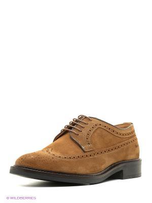 Туфли GANT. Цвет: коричневый