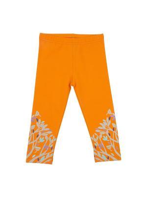 Брюки для девочки KOGANKIDS. Цвет: оранжевый