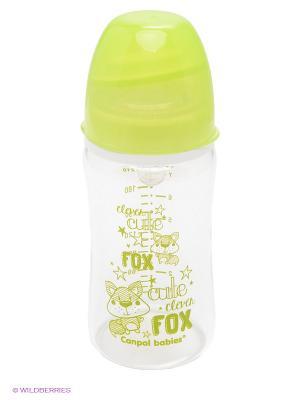 Бутылочка Canpol babies. Цвет: зеленый, прозрачный