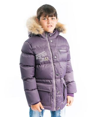 Куртка Давид Аксарт. Цвет: темно-фиолетовый