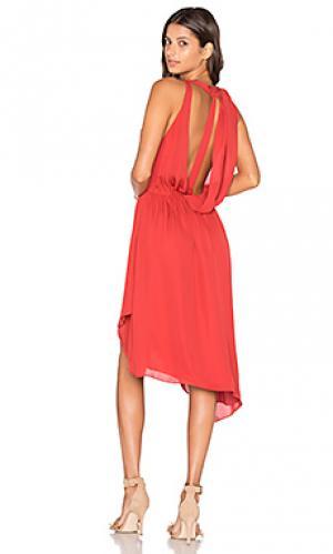 Мини платье с запахом без рукавов Haute Hippie. Цвет: красный