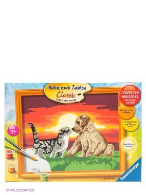 Раскраска по номерам Котенок и щенок Ravensburger. Цвет: коричневый, голубой, красный, оранжевый