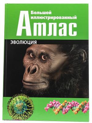 Эволюция: Большой иллюстрированный атлас КОНТЭНТ. Цвет: зеленый
