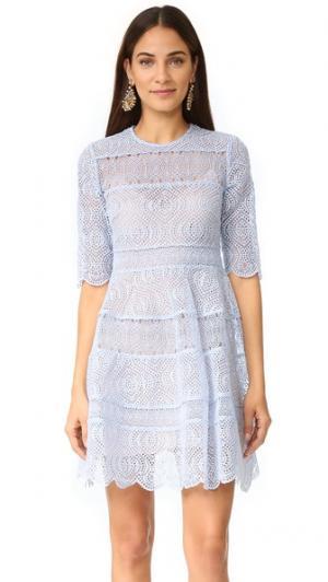 Расклешенное мини-платье Adorn с вышивкой Zimmermann. Цвет: голубой