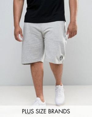 Loyalty & Faith Трикотажные спортивные шорты and PLUS. Цвет: серый