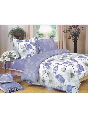 Комплект постельного белья ДУЭТ сатин, рисунок 669 LA NOCHE DEL AMOR. Цвет: сиреневый, серый, серебристый
