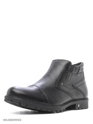 Ботинки Walrus. Цвет: черный