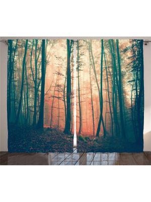 Комплект фотоштор Лес в оранжевом тумане, 290*265 см Magic Lady. Цвет: оранжевый,зеленый,красный