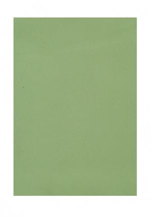 Комплект штор ТОМДОМ. Цвет: зеленый