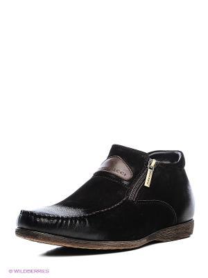 Ботинки Dino Ricci. Цвет: темно-коричневый
