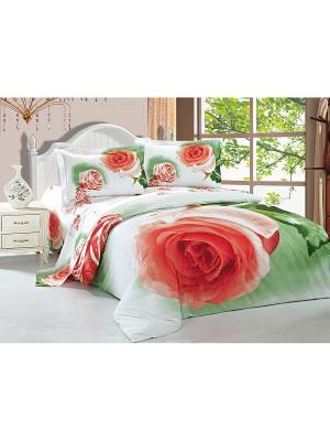 Комплект постельного белья Soft Line. Цвет: коралловый, белый, светло-зеленый