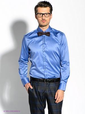 Рубашка Alex DANDY. Цвет: синий