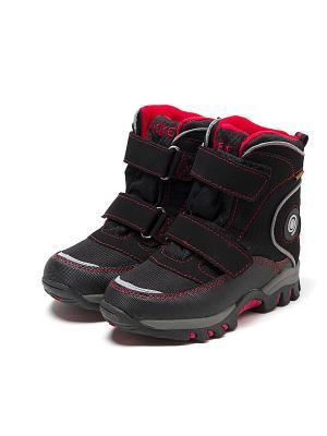 Ботинки REIKE. Цвет: черный