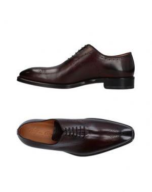 Обувь на шнурках STEFANO BRANCHINI. Цвет: баклажанный