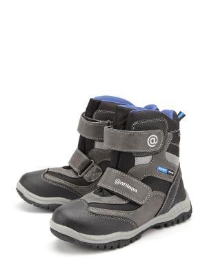 Ботинки Антилопа. Цвет: серый
