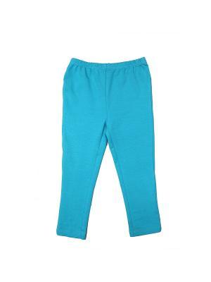 Спортивные брюки LAVIDO. Цвет: бирюзовый