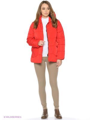 Куртка Befree. Цвет: красный