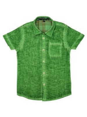 Рубашка Aston Martin. Цвет: зеленый