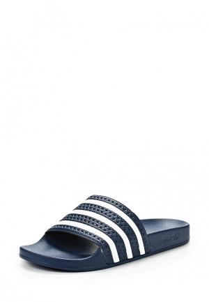Сланцы adidas Originals. Цвет: синий
