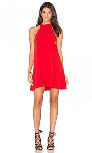 Мини платье colette SAYLOR. Цвет: красный