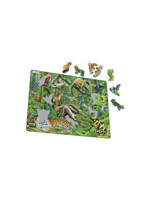 Пазл Южно-Американские тропики LARSEN AS. Цвет: зеленый, голубой, оранжевый, желтый, белый, синий