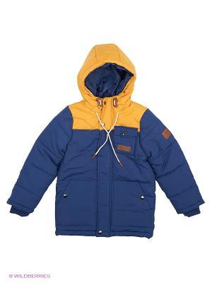 Куртка Modis. Цвет: темно-синий, темно-фиолетовый