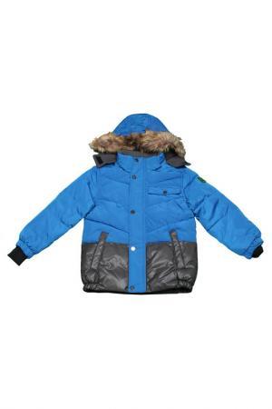 Куртка Versace 19.69. Цвет: princess blue