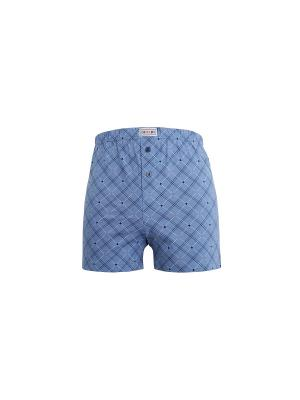 Трусы Boxer DiWaRi. Цвет: голубой