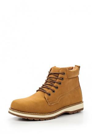 Ботинки T.P.T. Shoes. Цвет: коричневый