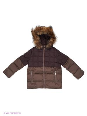 Куртка Барри Аксарт. Цвет: темно-коричневый