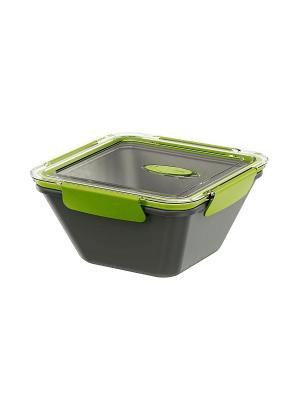 Ланч-бокс EMSA BENTO BOX 0.9л сер/зелен 513952. Цвет: серый, зеленый