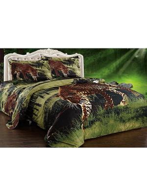 Комплект постельного белья Soft Line. Цвет: зеленый, коричневый