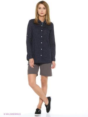 Блузка с длинными рукавами REGATTA. Цвет: синий