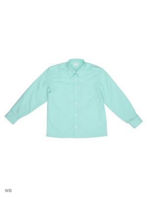 Рубашка Аэлита. Цвет: светло-зеленый