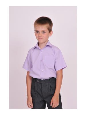 Рубашка SEMICVET. Цвет: лиловый