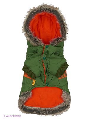 Куртка Lovabledog. Цвет: зеленый